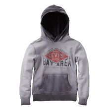 Levi's Boys hooded sweater