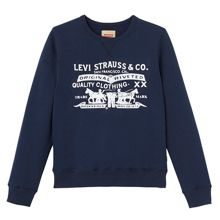 Levi's Boys Crewneck Cotton Sweatshirt