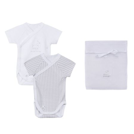 Absorba Babies set of two long-sleeved bodys