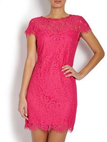 Morgan Short sleeve lace mini shift dress