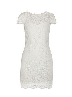 Short sleeve lace mini shift dress