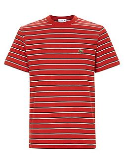 Crew neck t-shirt in striped jersey