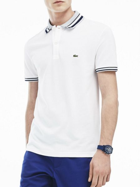 Lacoste Contrast Striped Collar Polo