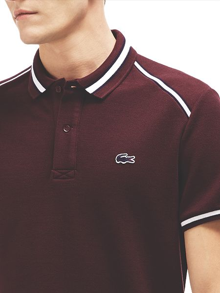 Lacoste Contrast Collar Polo Shirt Purple House Of Fraser