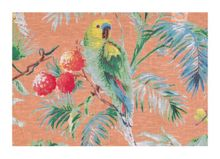 Marinette Saint-Tropez Carioca nectarine placemat pack of 6