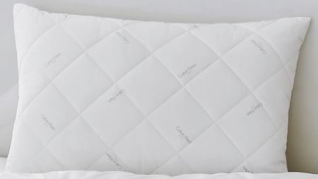 Calvin Klein Man made standard pillow