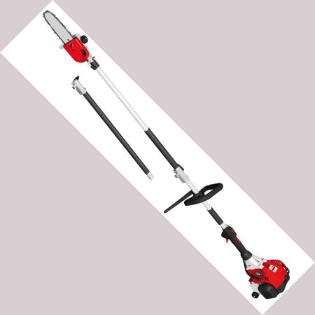 Grizzly Grizzly 25cc petrol long reach chain saw