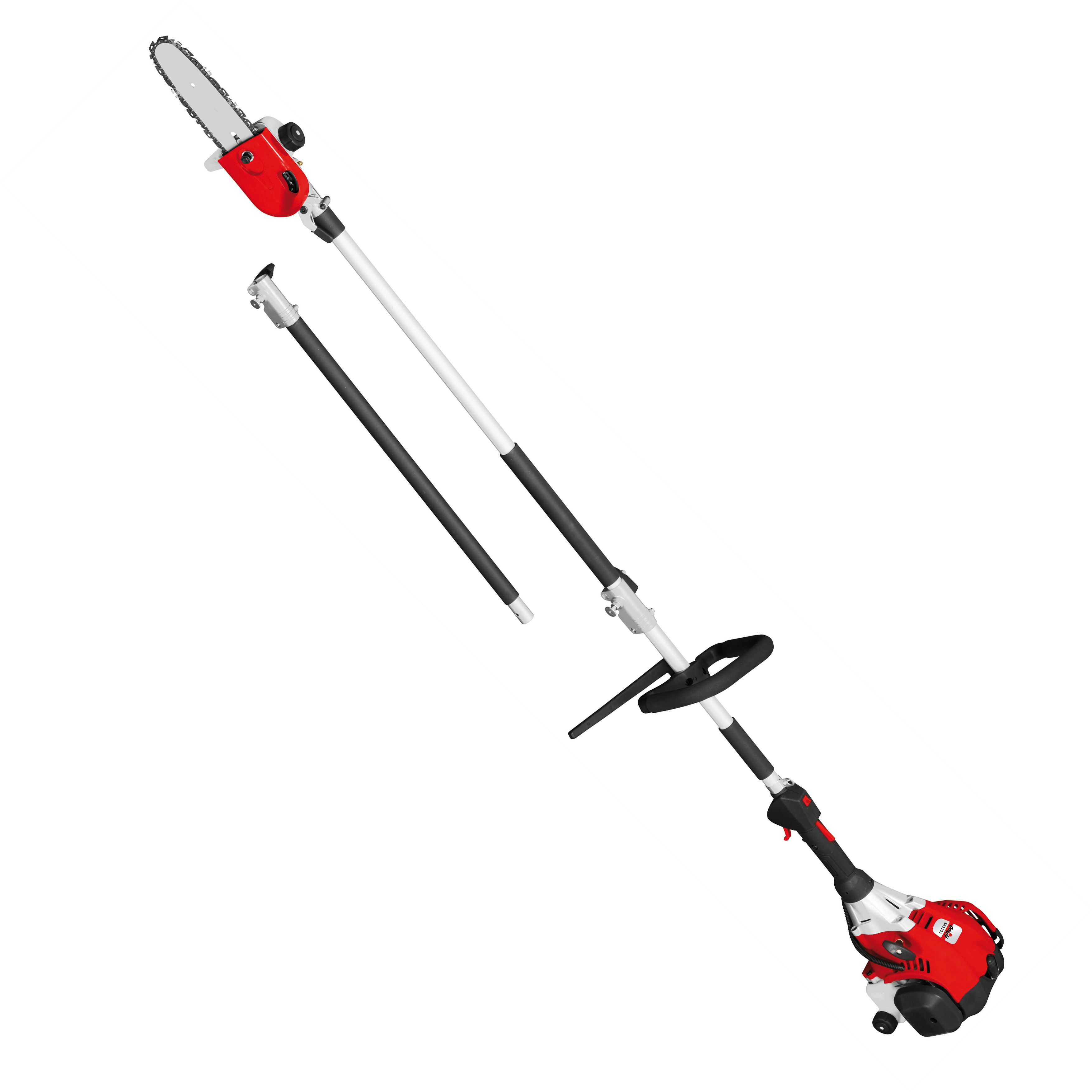 Image of Grizzly Grizzly 25cc petrol long reach chain saw