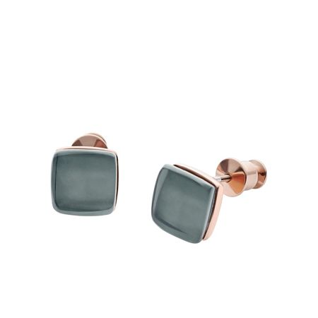 Skagen SKJ0875791 ladies stud earrings
