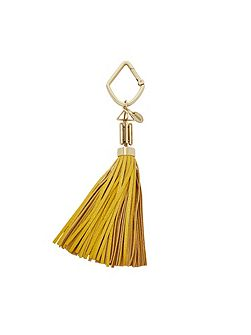 SL7073719 tassel key chain