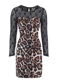 Jane Norman Lace Sleeve Animal Print Mini Dress