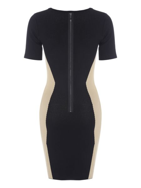 Jane Norman Black Camel Panels Knit Dress