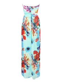 Rose printed maxi dress
