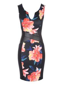 Jane Norman Floral Illusion Dress