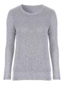 Jane Norman Silver Sequin Chiffon Back Jumper