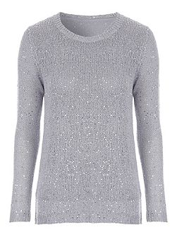 Silver Sequin Chiffon Back Jumper