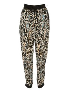 Jane Norman Animal print jogger