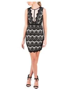 Jane Norman Black & Nude Scallop Lace Insert Dress