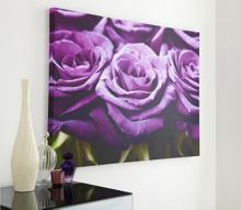 Graham & Brown Plum roses row wall art