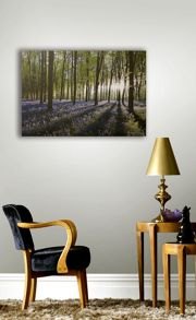 Graham & Brown Bluebell landscape wall art