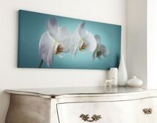 Teal orchid wall art