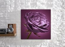 Plum on plum rose wall art