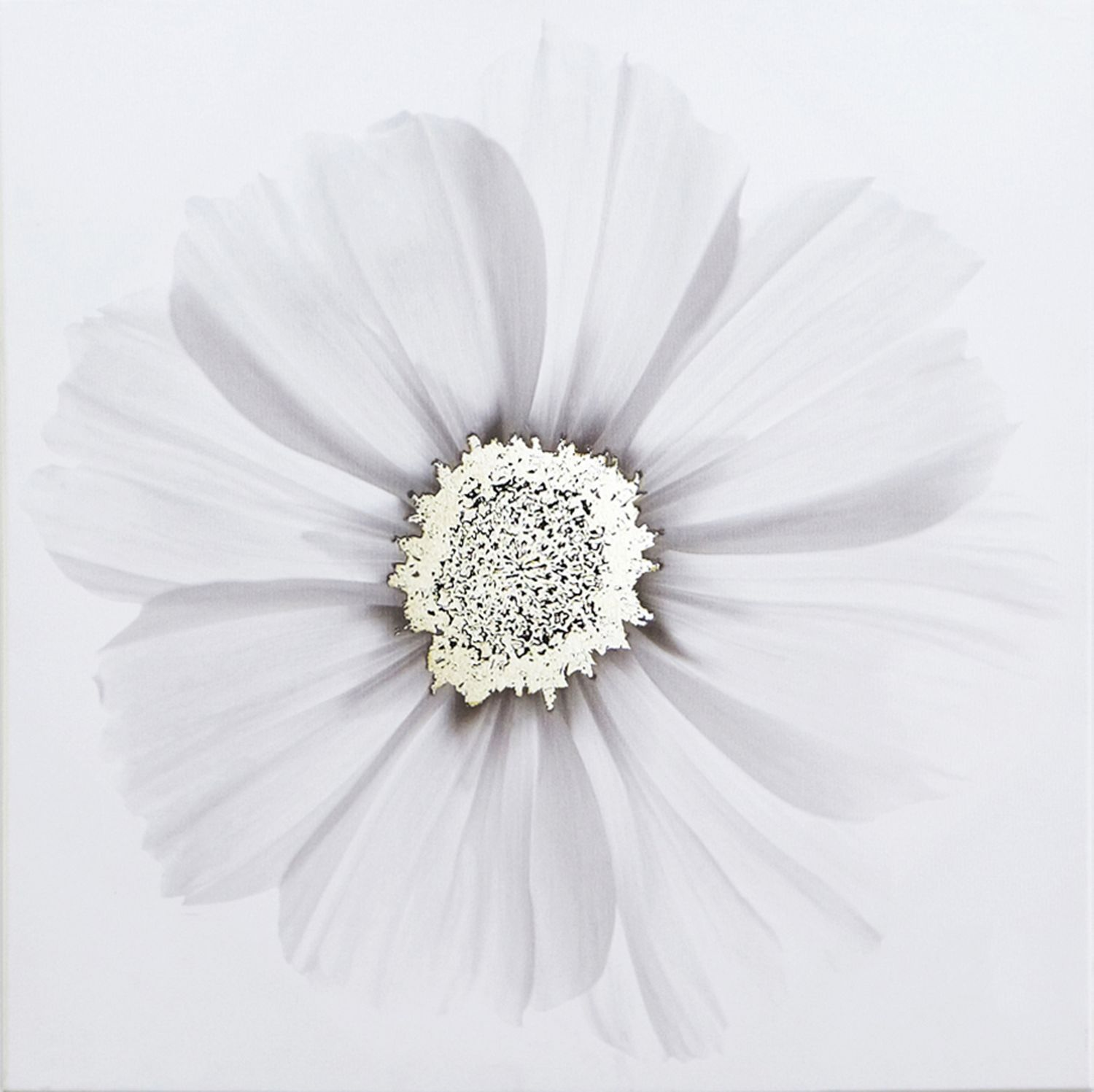 Metallic x ray floral wall art