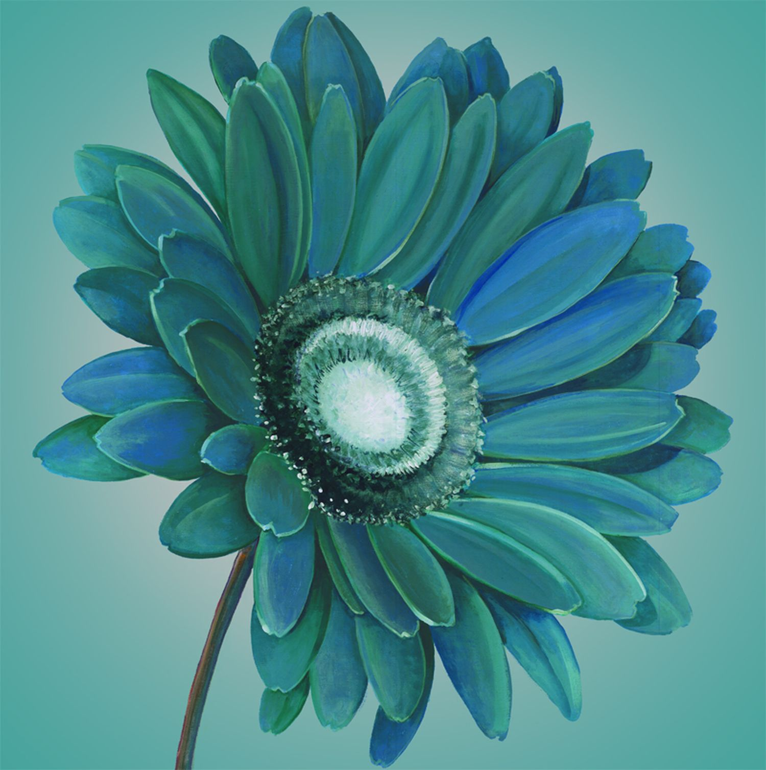 Teal gerbera wall art