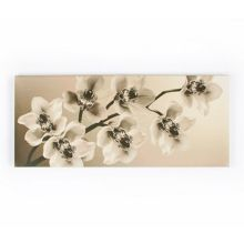 Graham & Brown Cream Orchid Branch Printed Canvas