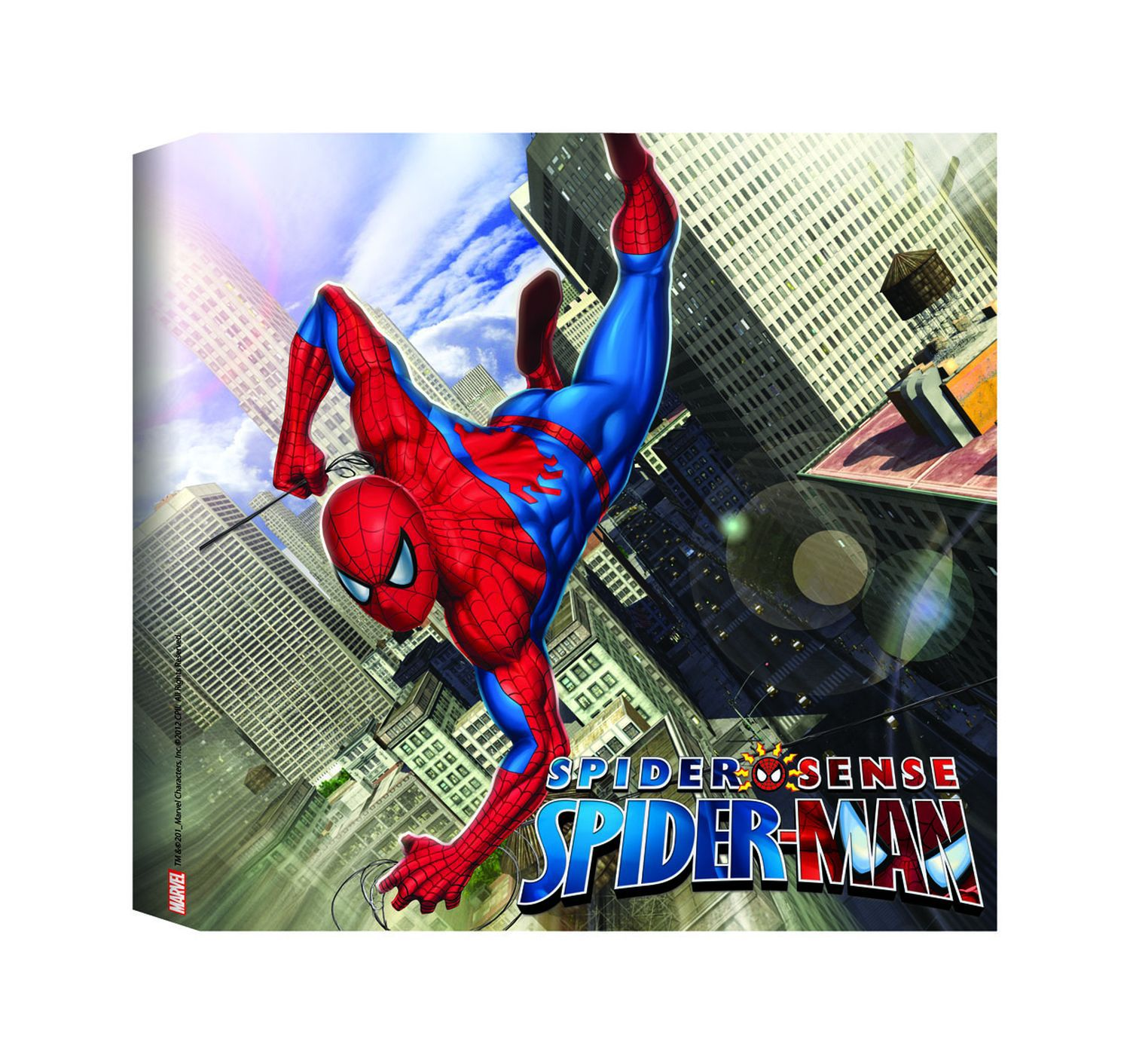 Spiderman Printed Canvas (30x30cm)