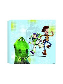 Toy Story Printed Canvas (30x30cm)