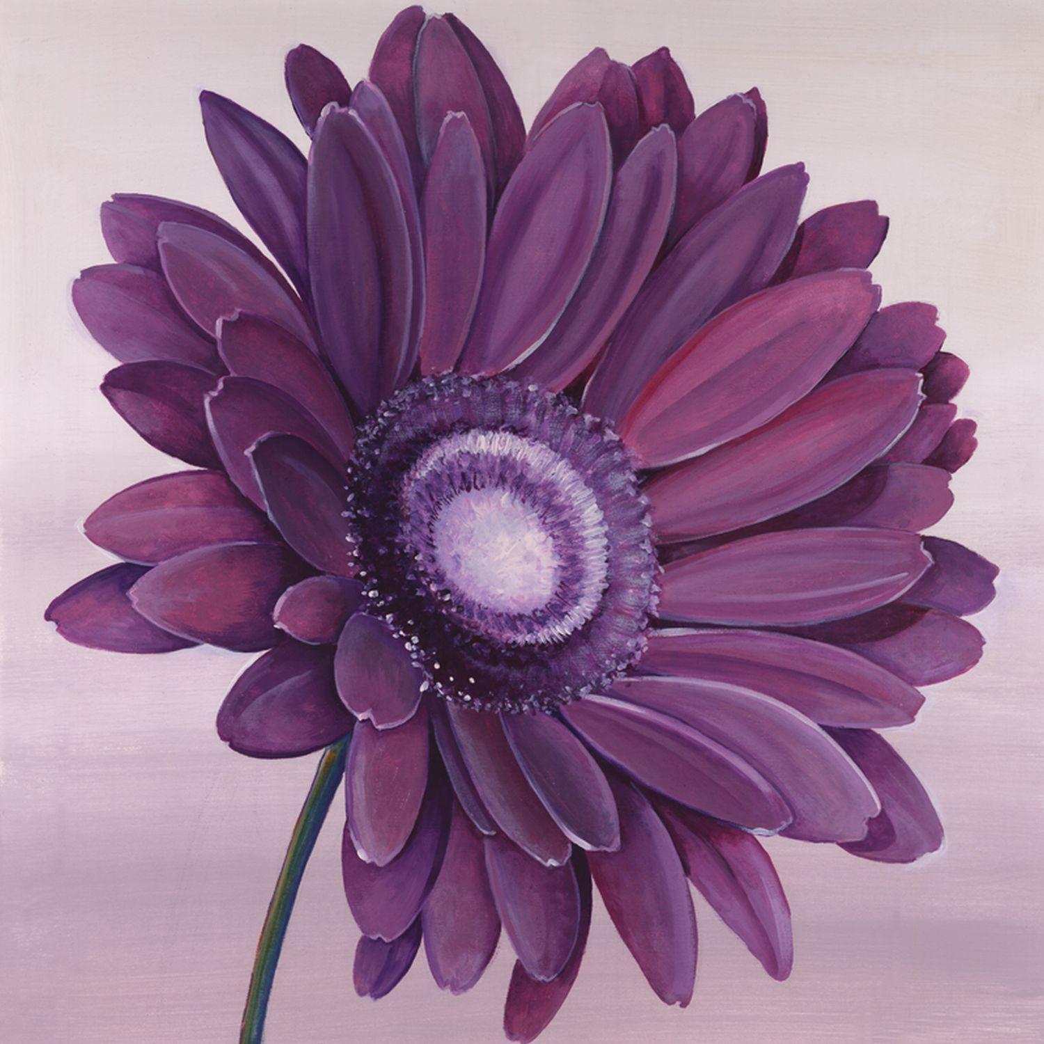Purple gerbera wall art