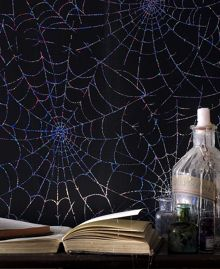 Graham & Brown Black cobweb moonlight wallpaper