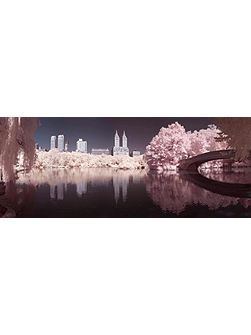 Pink Central Park Printed Canvas