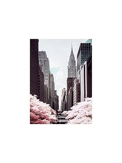 Pink 42nd Street Printed Canvas
