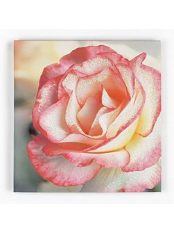 Petal Rose Glitter Printed Canvas