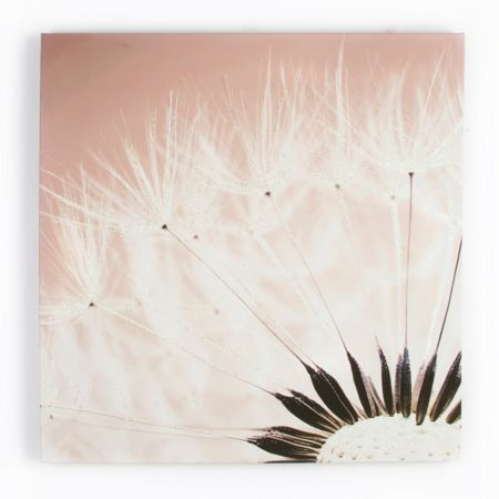 Graham & Brown Delicate Dandelion Glitter Canvas
