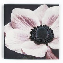 Graham & Brown Floral Glitter Printed Canvas