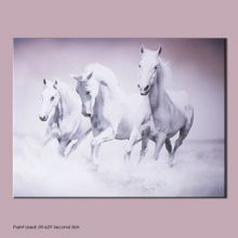 Graham & Brown White galloping waves canvas wallart