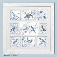White feathered friends collection small photo fr