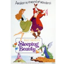Graham & Brown Disney Sleeping Beauty Canvas