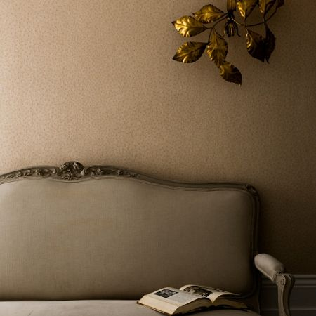 Graham & Brown Beige ostrich wallpaper