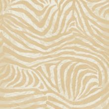 Graham & Brown White gold zebra wallpaper