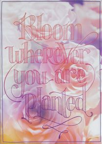 Pink bloom wherever you are planted printed canva