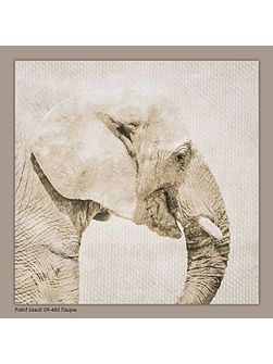 Trunk Printed Canvas