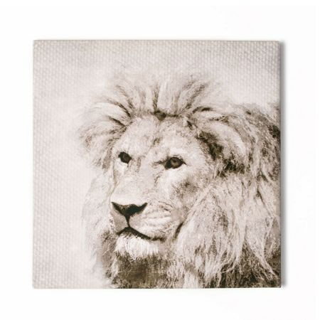 Graham & Brown Roar Printed Canvas