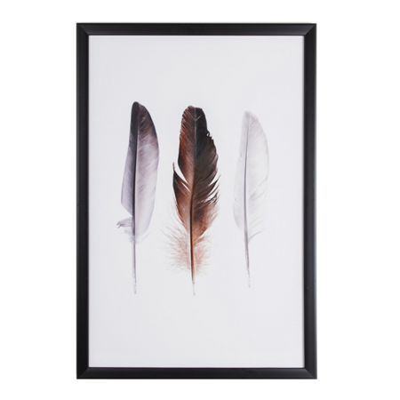 Graham & Brown Feather trio framed print