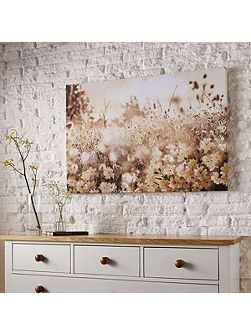 Meadow Landscape Canvas