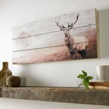 Graham & Brown Stag Print On Wood