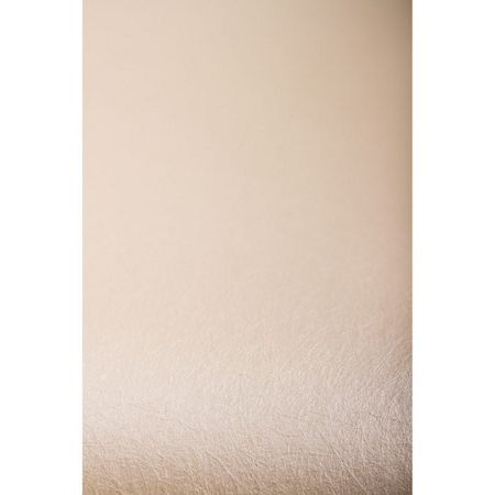 Graham & Brown Pearl Tranquil Wallpaper